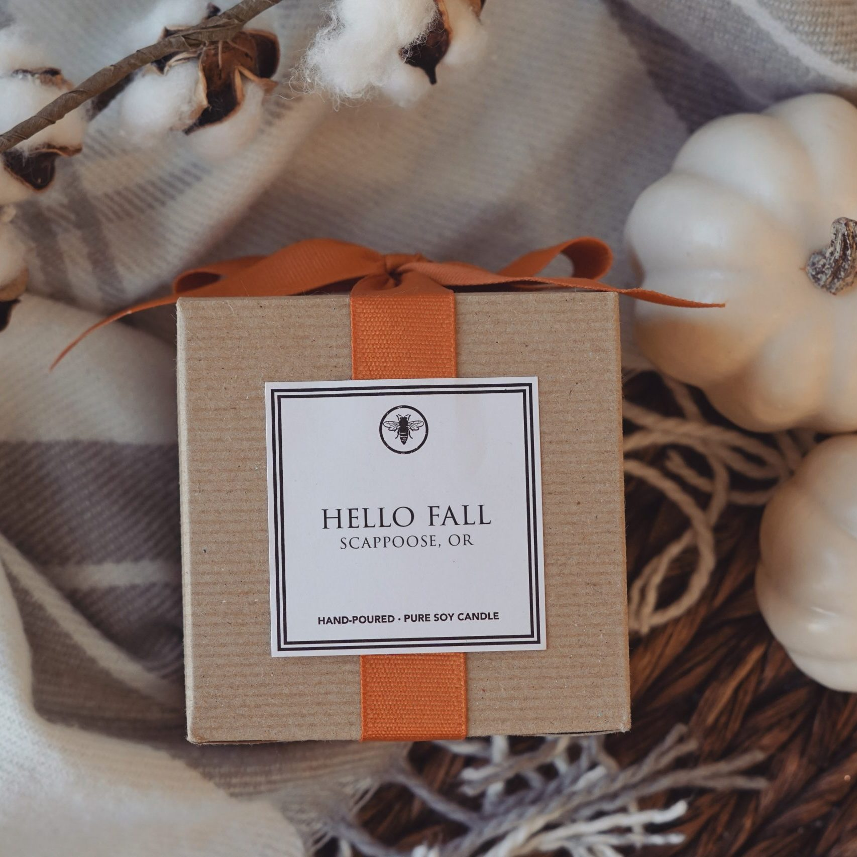 Hello Fall F